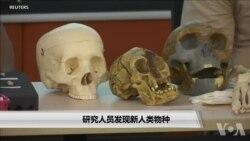 研究人员发现新人类物种