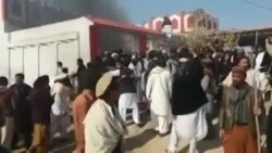 د طالبانو دفتر