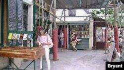 """Turistički vodič Rozmari Fleneri kod popularne američke knjižare u Parizu """"Šekspir i kompanija"""". (Foto: Lisa Brajant)"""