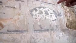 埃及发现4千多年历史的古墓