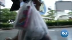 พลาสติกเปลือกล็อบสเตอร์ ทางเลือกใหม่ในการแก้ไขปัญหาขยะล้นโลก