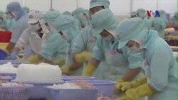 Một phần ba doanh nghiệp ở Việt Nam hối lộ khi trả thuế