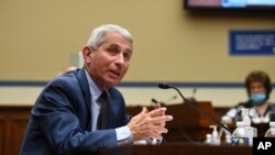 Dr. Anthony Fauci, director of the National Institute for Allergy and Infectious Diseases, speaks during a House Subcommittee on the Coronavirus crisis hearing, July 31, 2020 on Capitol Hill in Washington.