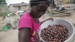 Afrikanın məşhur Şi yağı