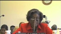 2013-11-15 美國之音視頻新聞: 博科聖地被美國定為恐怖組織並凍結資產