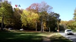 5K (Lima Kilometer): Mengunjungi Taman Rock Creek Park di Washington D.C.