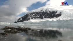 Plastik Atıklar Antartika'ya Kadar Ulaştı