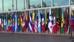 OEA aprueba resolución para reunificar a familias migrantes
