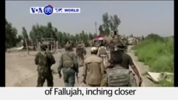 VOA60 World PM - Iraq: Government forces march into the northwestern outskirts of Fallujah