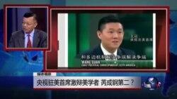媒体观察:央视驻美首席激辩美学者,芮成钢第二?