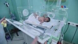 Կյանքի իրավունքը՝ սեռով պայմանավորված հղիության արհեստական ընդհատման խնդիրը Հայաստանում