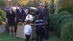 Президент США Барак Обама помиловал двух индюшек