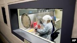 2020年3月19日檔案圖片: 美軍德特里克堡陸軍傳染病醫學研究所科學家安德里亞盧凱特正在做試驗。