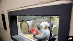 资料照片:美军德特里克堡陆军传染病医学研究所科学家正在做实验。(2020年3月19日)