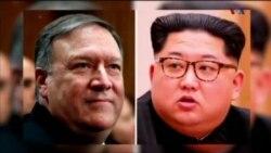 درباره ملاقات رئیس سازمان سیا با رهبر کره شمالی چه می دانیم