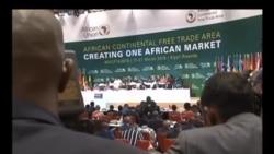 Zona de comércio livre em África ameaçada