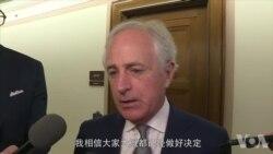 考克参议员接受记者采访