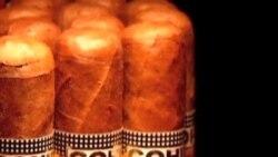 古巴举办雪茄节