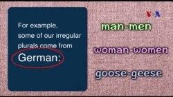 Ngữ pháp Thông dụng: Irregular plurals (VOA)