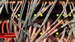 Nghiên cứu: Tin tặc liên hệ với TQ tấn công Việt Nam