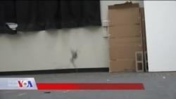 Salto - robot koji skače i uči od životinja