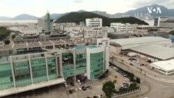 香港蘋果日報可能在週六被迫停止運作