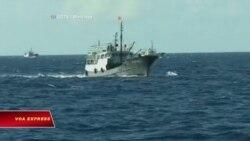 Hà Nội tố tàu TQ 'truy đuổi' tàu cá Việt trong vùng đặc quyền kinh tế