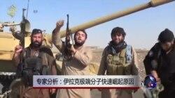 VOA连线:专家分析:伊拉克极端分子快速崛起原因