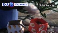 VOA60 Thế Giới 13/12/2012