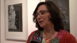 Shkodër: Ekspozitë e piktores Ikbale Kalaja
