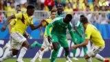Senegal da Colombia Bitar Wasa