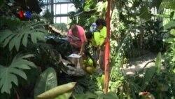 Bulan Penggunaan Taman untuk Pelestarian Flora dan Fauna Liar (2)