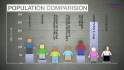 Explainer: US Census 2016 Population Update