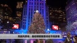 亮丽风景线:曼哈顿橱窗喜迎佳节竞豪奢