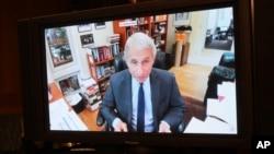 Dr. Fauci gjatë dëshmisë virtuale.