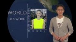 Học tiếng Anh qua tin tức - Nghĩa và cách dùng từ Model (VOA)