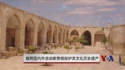 叙利亚境内外活动人士奋力保护历史遗产