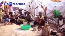 Abanyekongo Basaga 300,000 Bahungiye Urugomo muri Uganda
