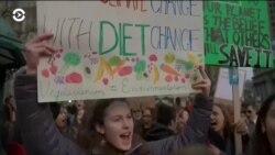 Итоги года: молодежь требует защитить планету
