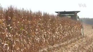 Biden Cabinet Picks Farmers USAGM