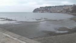 Намалувањето на Охридското Езеро може да се одрази врз плашицата
