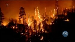 Тисячі вогнеборців намагаються взяти під контроль стрімку пожежу біля озера Тахо. Відео