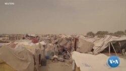Des milliers de réfugiés nigérians fuient vers le Cameroun