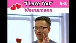 Այս Վալենտինի օրը «Ամերիկայի Ձայն»-ը ասում է «Ես սիրում եմ քեզ» 23 տարբեր լեզուներով
