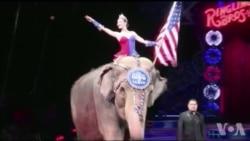 美国万花筒:百年玲玲马戏团宣布关门大吉