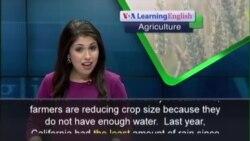 Anh ngữ đặc biệt: California Drought (VOA Ag)