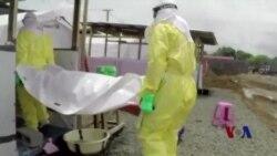 世卫:埃博拉病毒可能会感染两万多人