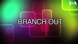 «Английский за минуту»: branch out