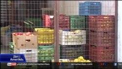 Fier: Rikthehet në vëmendje sektori bujqësor