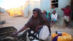 美国万花筒:全球饥饿问题恶化